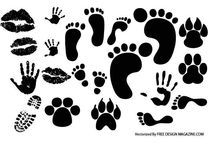 feet_vector