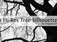 Hi_Res_Tree_Silhouettes_by_fudgegraphics